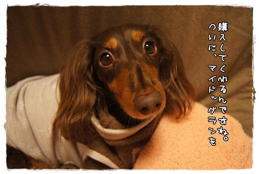 002_2013112806435136c.jpg