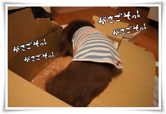 014_20130703202402.jpg