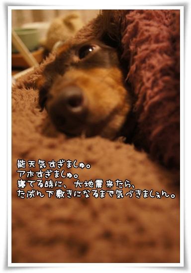 025_201310270035410e7.jpg