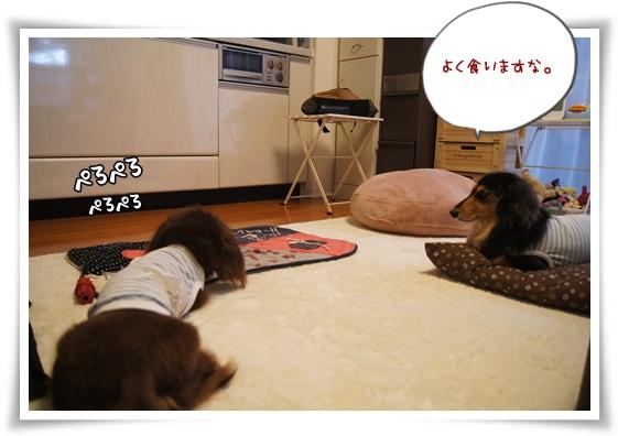 079_20130721191432.jpg