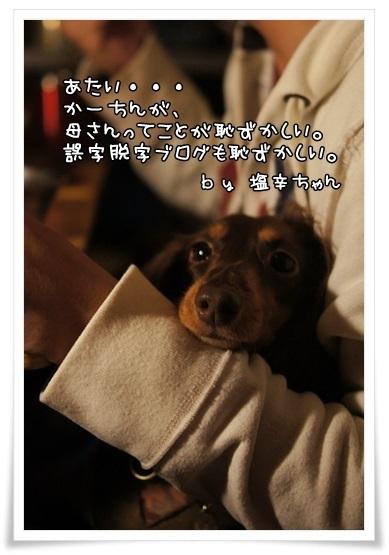 158_20131027184730479.jpg