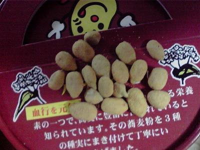 shukusho-P1000400.jpg