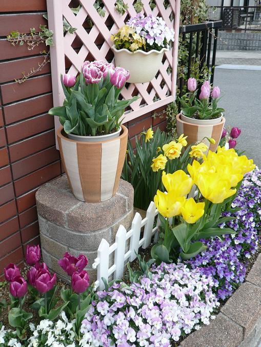 P1370058_門前花壇4月5日