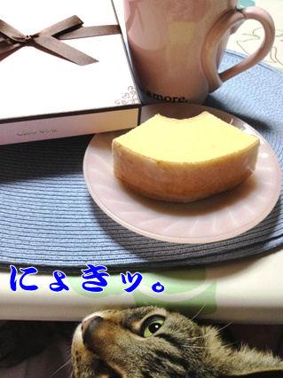 3_20130221214248.jpg