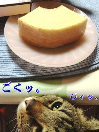4_20130221214249.jpg
