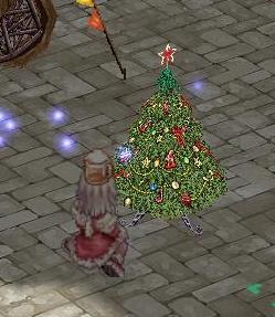 もみの木11