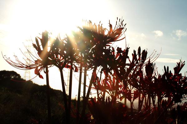 2011_09_19_12.jpg