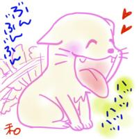 柚月なごみ(冬至)