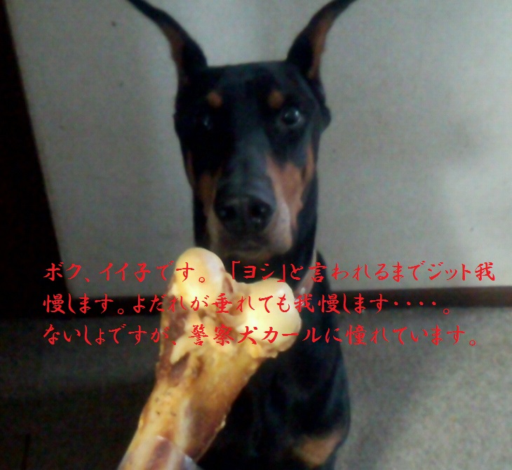 2013_10_05_10_40_00.jpg