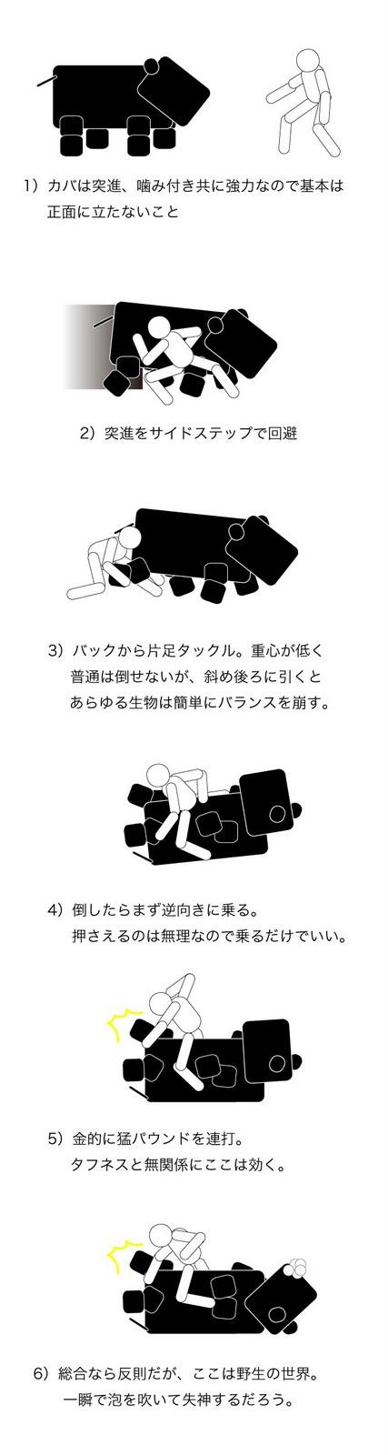 カバとの戦闘方法