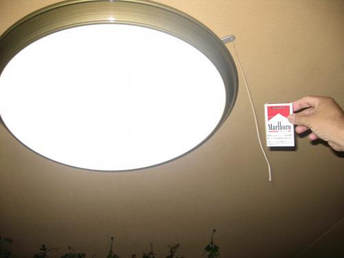 新ライト大きさ
