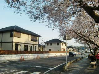 錦帯橋サテ