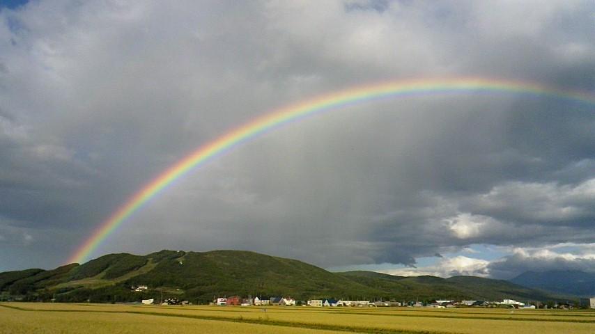 虹 in  東川