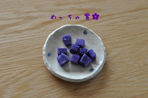 DSC_0120 めっちゃ紫