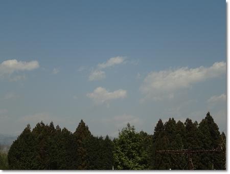 20120407-DSC01238.jpg