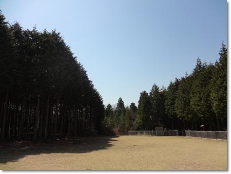 20120407-DSC01243.jpg
