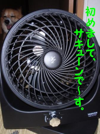 P7251012.jpg