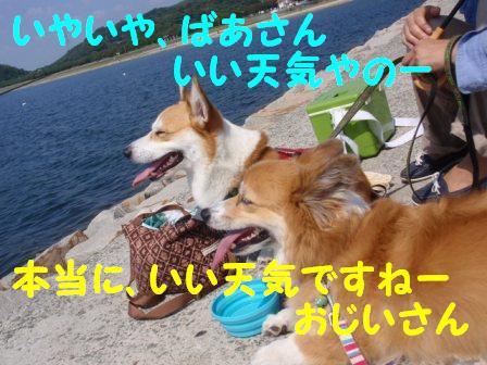 P92313591_20131021224353d57.jpg