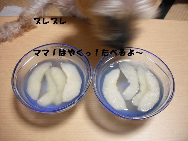 DSCF0172.jpg