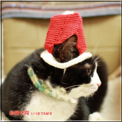 サンタ帽子試着1