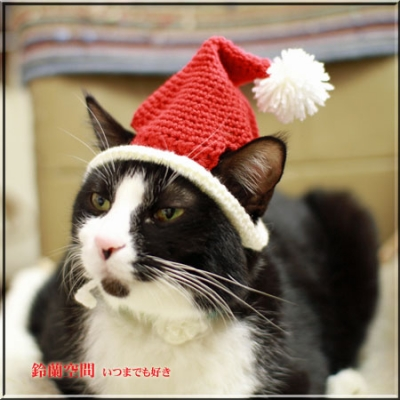 サンタ帽子試着2