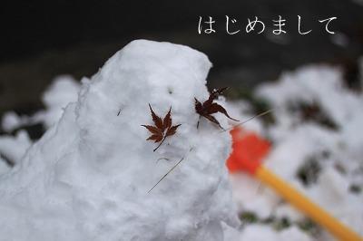IMG_8940-1.jpg