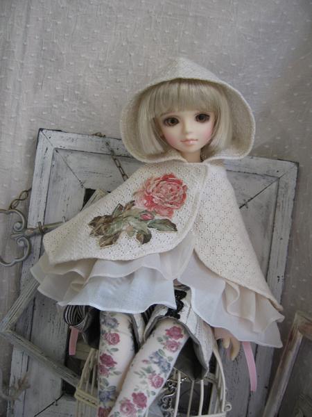 blog-dls29-msd-kp2-rose1.jpg