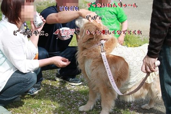 IMG_8645_R.jpg