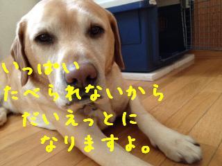 ___20130207114554.jpg