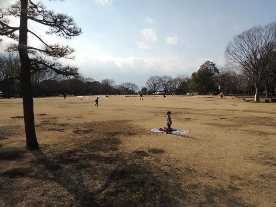 130211-13sagamihara04.jpg