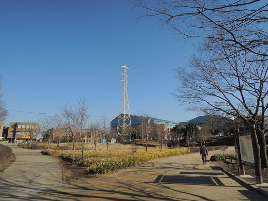 130213-01park01.jpg