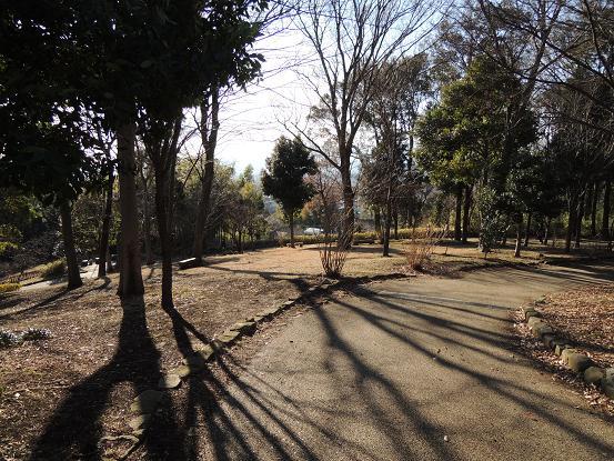130213-12park06.jpg
