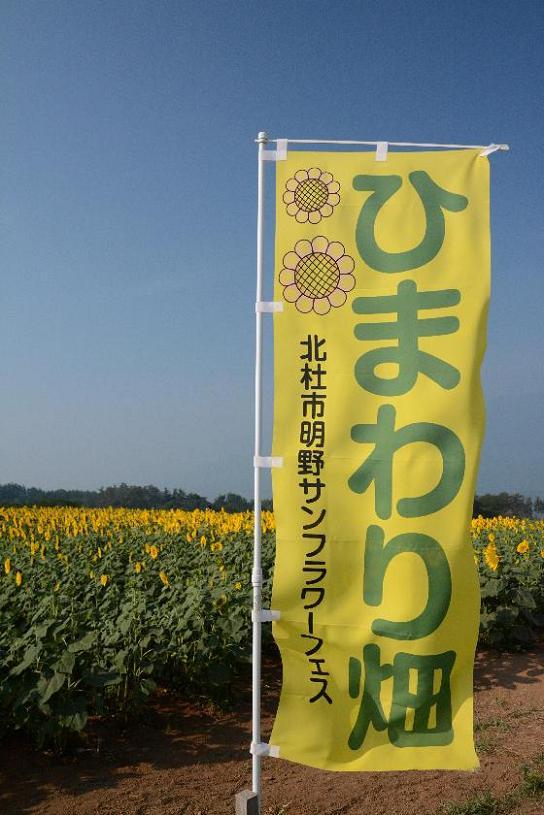 130810-01himawari01.jpg