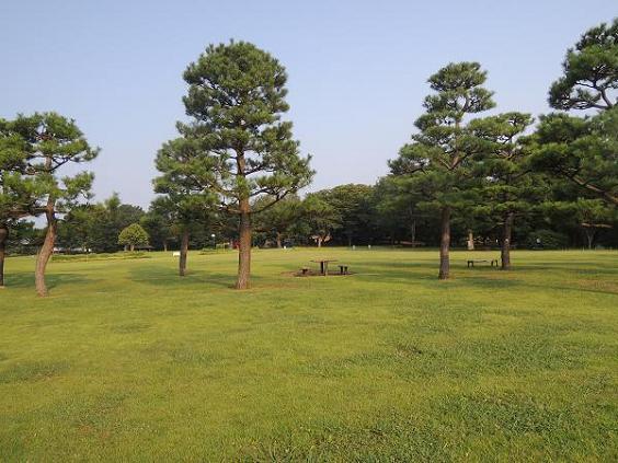 130812-12park02.jpg