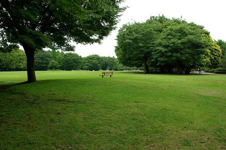 100619-12sagamihara park view