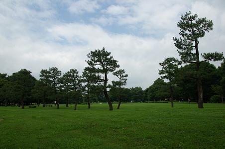 100704-15sagamihara park view