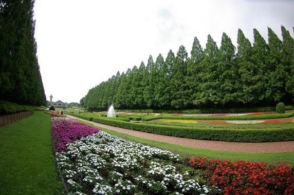 130727-16sagamihara park03