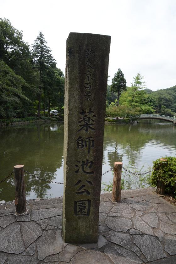 130803-01yakushiike park01
