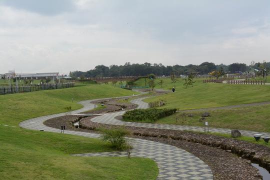 130914-04hikichigawakouen yutorinomori