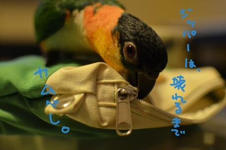 PicsArt_1360224121237.jpg