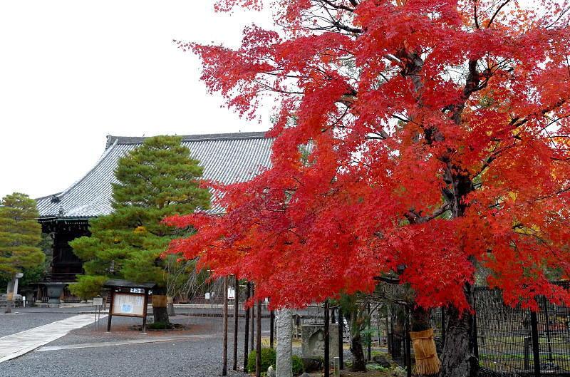 2014Blog5475.jpg