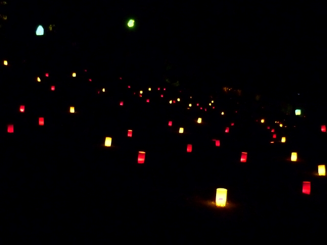 なら燈花会2013