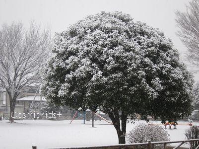 snowscene022012