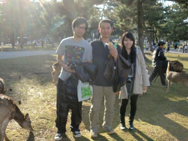 カウチサーフィン(中国・香港、アイシーとアーロン)、奈良公園のシカと。