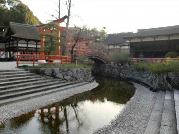 カウチサーフィン(ロシア・モスクワ、ロニとドミトリ)、下賀茂神社。