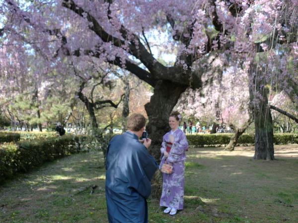 カウチサーフィン(アメリカ、ケーシーとアダム)、桜の木の下で