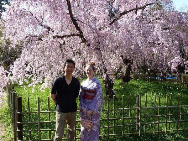 カウチサーフィン(アメリカ、ケーシーと私)、京都御所のしだれ桜