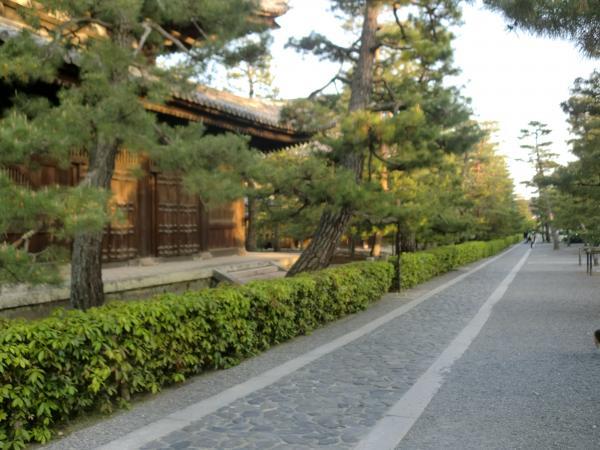 カウチサーフィン(大徳寺)