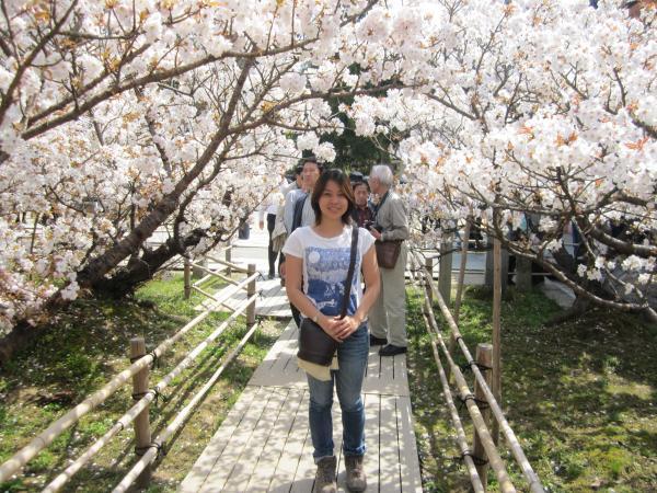 CouchSurfing(メイサンと御室桜。)