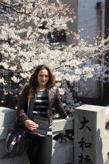 カウチサーフィン(祇園白川の桜。)
